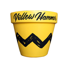 Yellow Hammer - Plant YH Custom