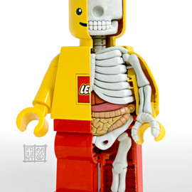 Jason Freeny - LEGO MiniFigure Anatomy Sculpt 1