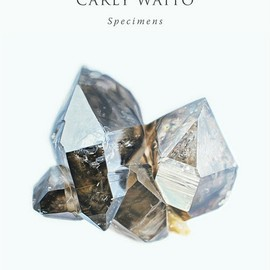 Carly Waito - Specimens
