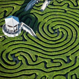 England - Longleat Hedge Maze in Wiltshire