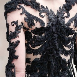 Alexander McQueen - the-moth-princess